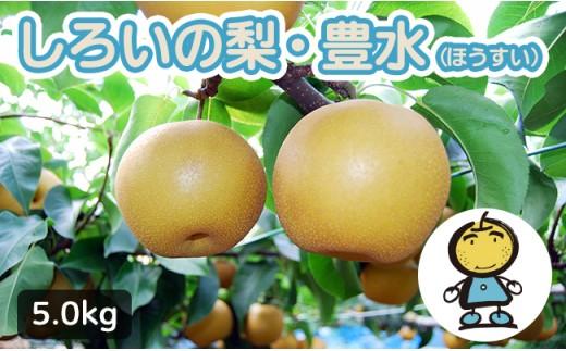 【先行受付】しろいの梨 豊水 5kg