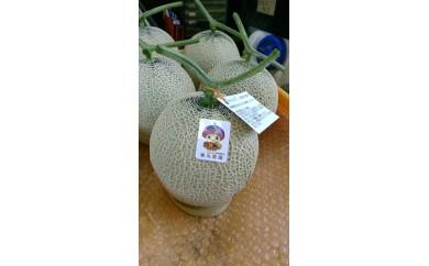 [№5862-1156]栗丸農園 アールスメロン(マスクメロン)2玉