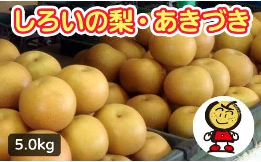 【先行受付】しろいの梨 あきづき 5kg