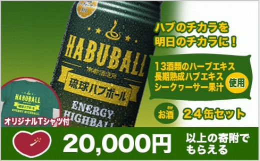 NS03:琉球ハブボール24本 オリジナルT-シャツセット