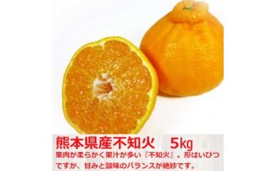 [№5532-0117]熊本県産 不知火5kg ◆クレジット限定◆