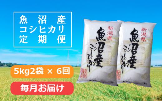 魚沼産コシヒカリ定期便5kg2袋×6回 /毎月お届け