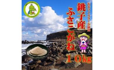 潮風香る銚子のお米 銚子産ふさこがね 10kg(5kg×2袋)