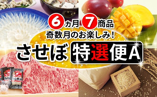 Z101 [定期便] させぼ特選便2019A 6ヵ月(7品)送付 【6,000pt】