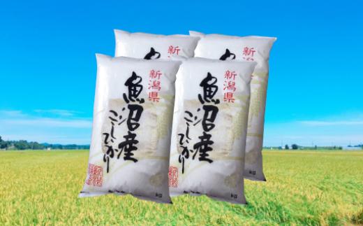 魚沼産コシヒカリ20kg(5kg×4袋)