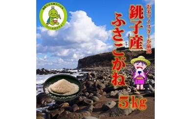 潮風香る銚子のお米 銚子産ふさこがね 5kg