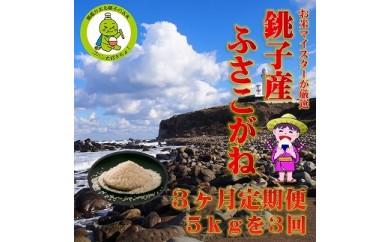 3ヶ月定期便 潮風香る銚子のお米 銚子産ふさこがね 5kg
