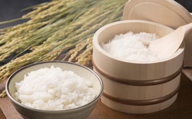 3カ月定期便千葉県産コシヒカリ10kg