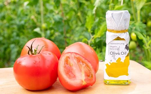 『めぐみ農園』のトマトと『搾油所 地球』のEXVオリーブオイルのコラボギフト