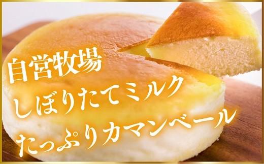 A-2 【2018朝来市菓子部門1位】ジャージー牧場らいらっくチーズケーキ