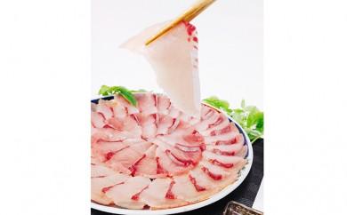 [№5684-1328]ひみ寒ぶりしゃぶしゃぶ盛り皿