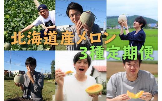 【先行予約】北海道産赤肉メロン3種定期便(1玉×3ヶ月)