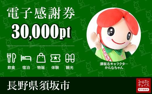 須坂市 電子感謝券30,000ポイント
