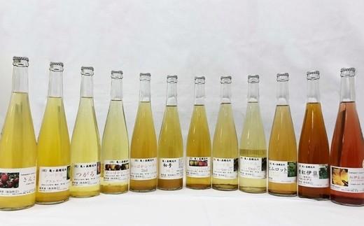 【329】 花巻産シードル&ワイン12本(500ml)飲み比べセット