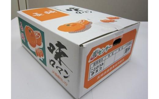 味ロマン(みかん) / 約5kg 【長崎西彼農業協同組合】