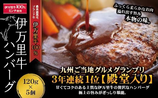 J222伊万里牛ハンバーグ(5個入り)