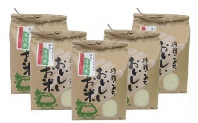 [№5558-0040]清流米(コシヒカリ) 3kg×5袋 計15kg