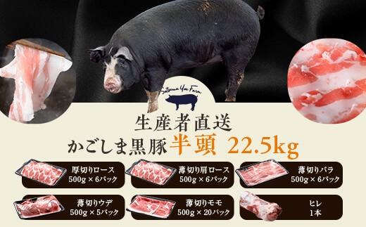 T-002 生産者直送黒豚半頭 約22.5キロ