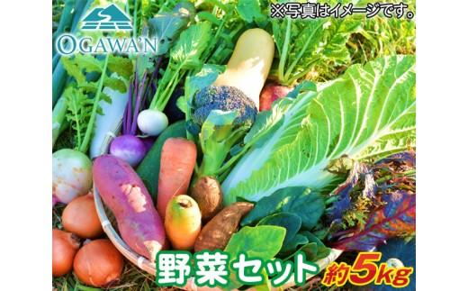 No.029 OGAWA'N農家のこだわり野菜セット 約5kg / 農産物 やさい 詰合せ 旬 埼玉県 特産品