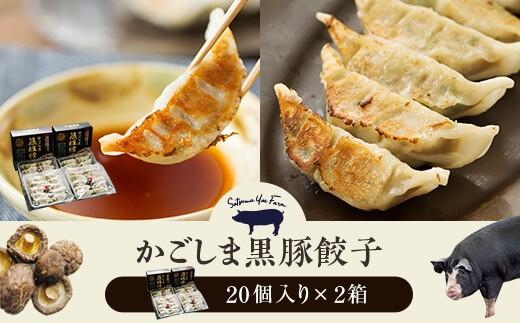 Z-705 黒豚餃子2箱