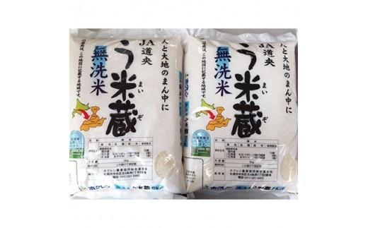 <30年産新米>う米蔵無洗米5kg×2袋 合計10kg【1037443】