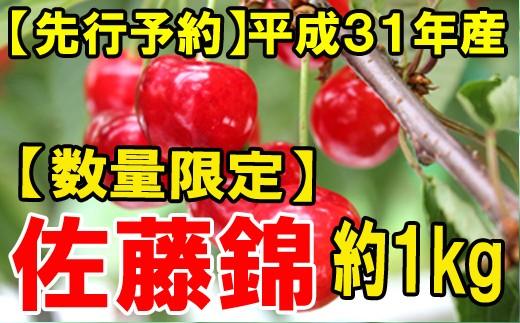 【先行予約】平成31年産さくらんぼ佐藤錦(ご自宅用)約1kg