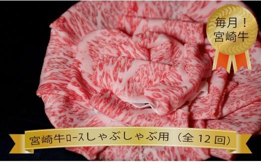 【定期便】宮崎牛ロースしゃぶしゃぶコース(全12回) 31-BF32