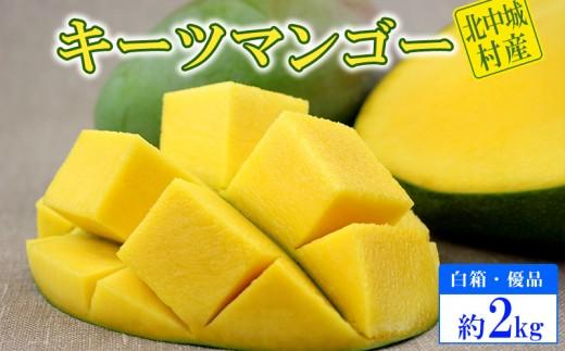 【2019年発送】北中城村産キーツマンゴー2玉~5玉(約2kg)【白箱・優品】