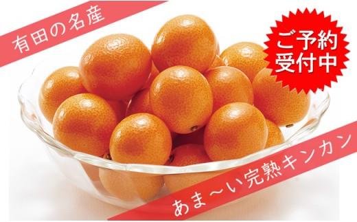 F10-21 減農薬!完熟キンカン2kg JA伊万里きんかん部会-有田