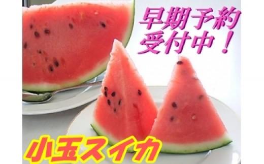 118C.特選 秀尾花沢産小玉スイカ2個 7月下旬頃~8月上旬頃発送【平成31年産】