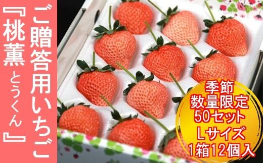 (02007)【季節・数量限定50セット!】いちご『桃薫」Lサイズ1箱12個 ご贈答用
