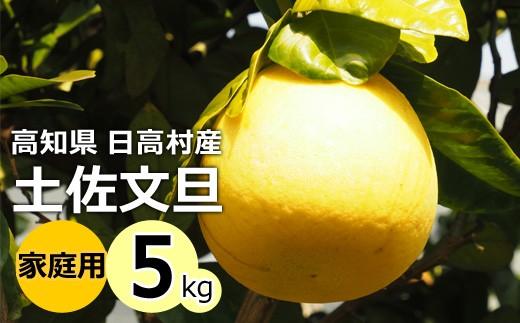 [№5725-0165]高知県産 土佐文旦 家庭用 5kg