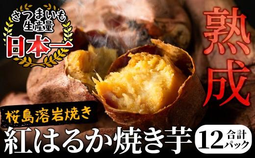 B0-017 【桜島溶岩焼き】熟成 紅はるか焼き芋 ゴールドランク