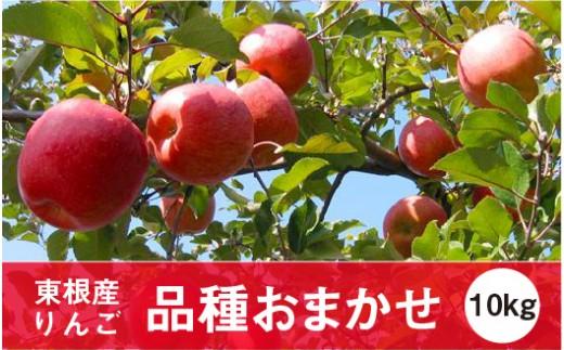A-0640 2019年産 りんご(品種おまかせ)10kg JA提供
