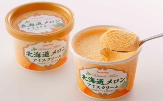 S-02 とよとみ牛乳北海道メロンアイスクリーム【110ml 12個】