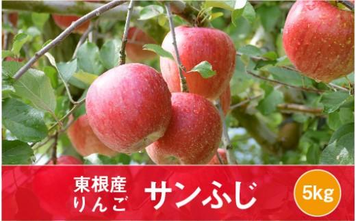 A-0647 2019年産 りんご「サンふじ」5kg JA提供