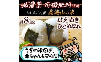 BL02【減農薬・有機肥料】<計8㎏> 鳥海山の恵み 庄内米2種食べくらべセット30年産