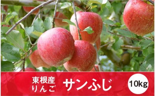 A-0648 2019年産 りんご「サンふじ」10kg JA提供