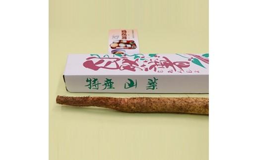 自然薯(じねんじょ) 1kg【1061931】