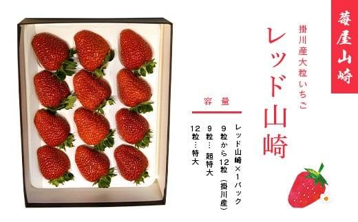 「イチゴ 山崎」の画像検索結果