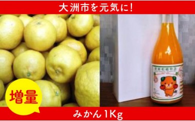 【増量】 柑橘王国愛媛産柑橘【ポンカン】3kg+1kg&みかんジュース2本
