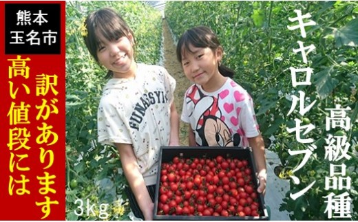 Q2 玉名産熟成ミニトマト「キャロルセブン」(3kg)