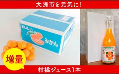 【増量】柑橘王国愛媛産温州みかん【南柑20号】3kg+みかんジュース2本+1本増量