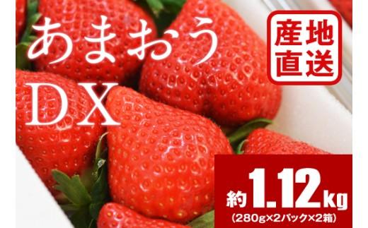 B826 【産地直送】あまおうDX たっぷり4パック