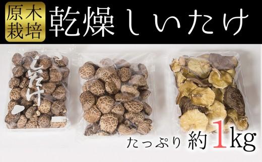 しいたけ好きの為の贅沢セット!臼杵産ふるさと乾しいたけCセット(計1kg)
