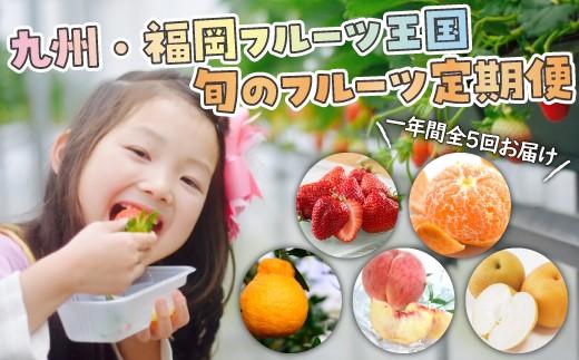 E036.【お得】九州・福岡フルーツ王国.旬のフルーツ定期便Cセット