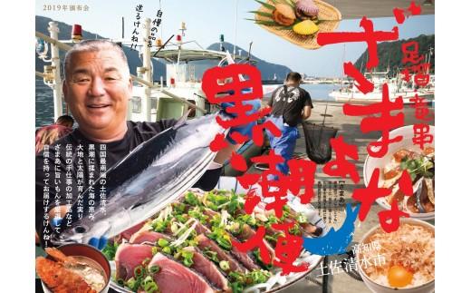 【O-2】【2019夏便】足摺・竜串ざまあな黒潮便