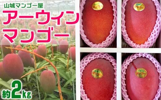 【2019年夏発送】山城マンゴー屋のアーウィンマンゴー約2kg