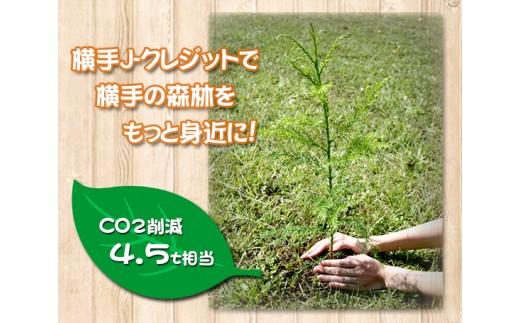 No.495 【4.5t相当】横手J-クレジットで横手の森林をもっと身近に!CO2削減 / 植樹 間伐 自然保護 秋田県 おすすめ