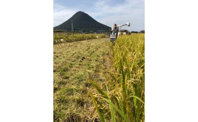 稲刈り(コンバイン)